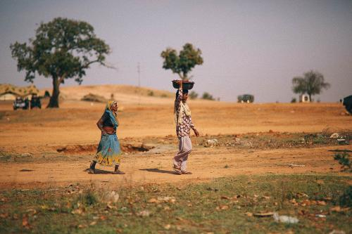 Ten years of FRA: only 3 per cent of forest dwellers' rights recognised