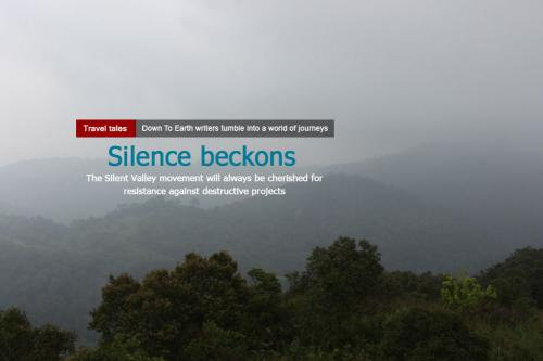 Sounds of silence: a forest that survived 'development'