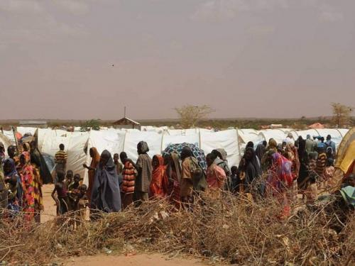 New drought in Ethiopia puts recovery at risk
