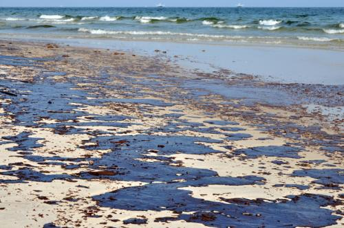 Oil spill will deprive the marine flora of sunlight (Representative Image from iStock)