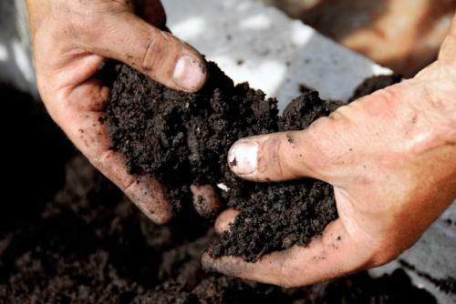 Two factors influence Se concentration in soil: precipitation and aridity index (Credit: iStock)