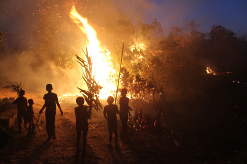 A bunch of Khasi children fire-fighters watch on, as the flames erupt in a slash and burn episode. (Credit: Mirza Zulfiqur Rahman)