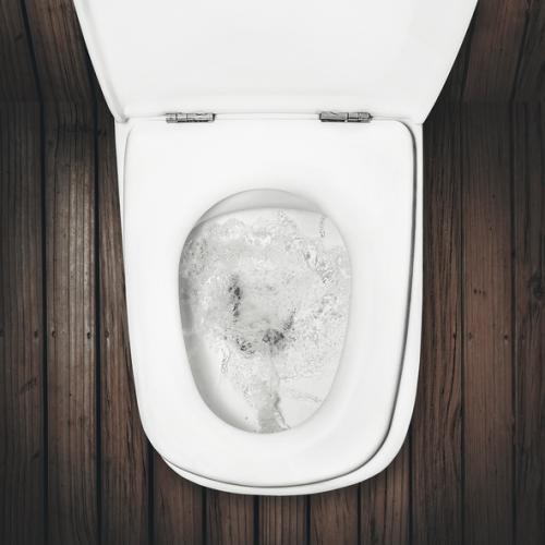 The invention of flush toilets increased the volume of waste from toilet by almost 20-fold (Credit: iStock)