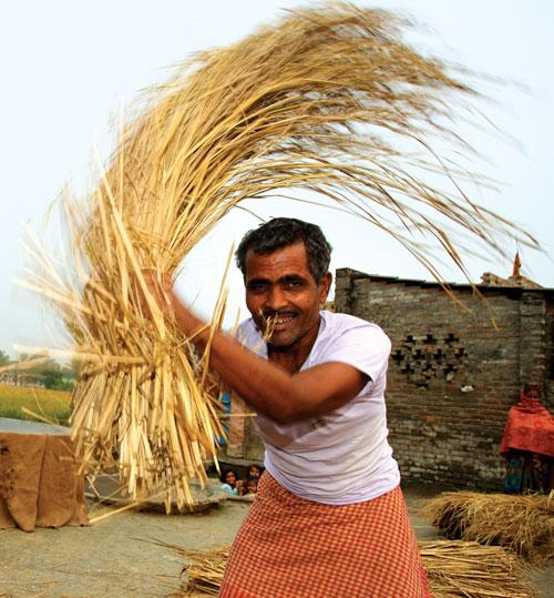 Should farmers get steady income?