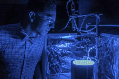 The photoreactor converts carbon dioxide to organic materials in the presence of blue light (Credit: University of Central Florida)