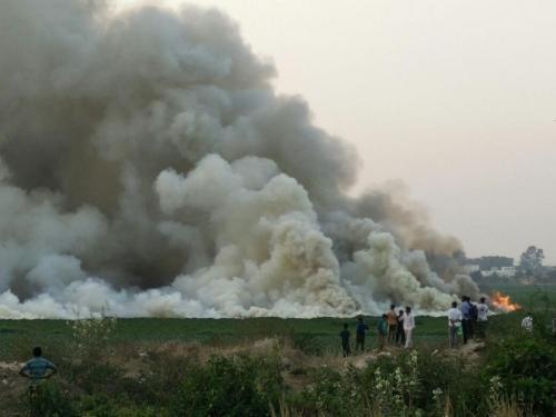 Karnataka government seeks more time to clean Bellandur Lake