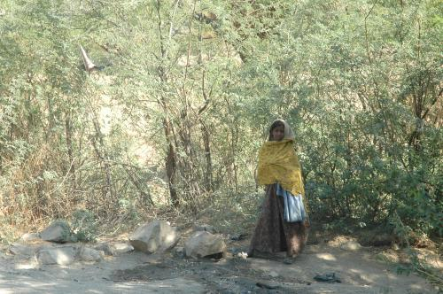 India fails to protect property rights of indigenous and rural women, says report