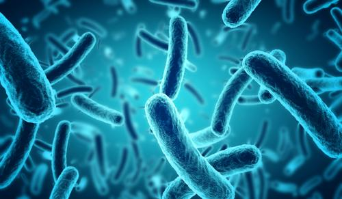 Resistance in gonorrhoea-causing bacteria is increasing and there are no new drugs
