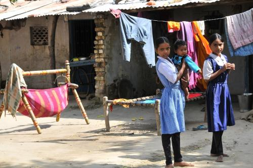 Three-year action plan identifies gaps in rural development schemes