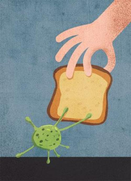 जीवाणुओं का रहस्य