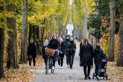Living near forests might improve mental health, but urban greenery not effective: study