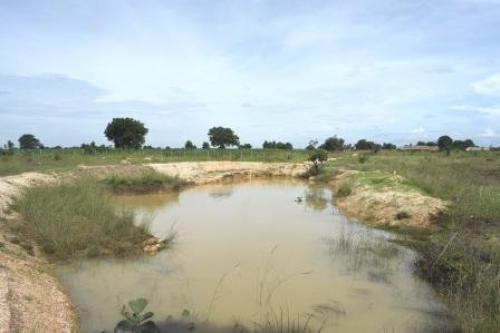 At Polam, Supriya and Anil Gaddam have turned their barren farm into an oasis by setting up water harvesting structures, such as swales, trenches and percolation tanks Credit: Adithyan PC