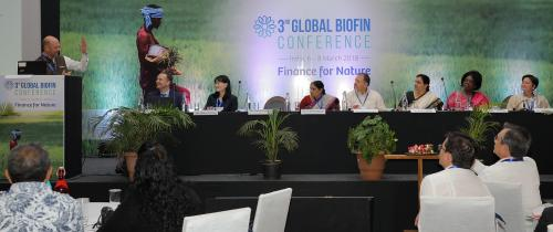 Private players express interest in financing biodiversity conservation