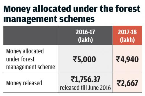 forest fires in india increased by  per cent in last two years besides this the budget to fight forest fires has been reduced by   per cent in  states in  shows the state of indias environment  report