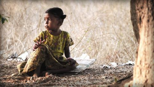 India's neglected tropical diseases