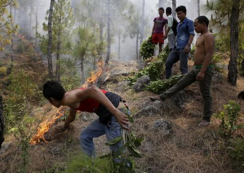 Himachal Pradesh forest fires: Dhamarshala, Kasauli pine for respite