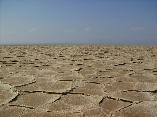 Climate change, overutilisation dry up Ethiopian lakes
