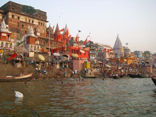 Who will save the Ganga?