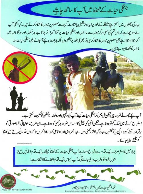 A poster published by the Wildlife Department of Khyber Pakhtunkwha to raise awareness among youngsters, especially those living in rural settlements, about damage of hunting to the bird population in the province.