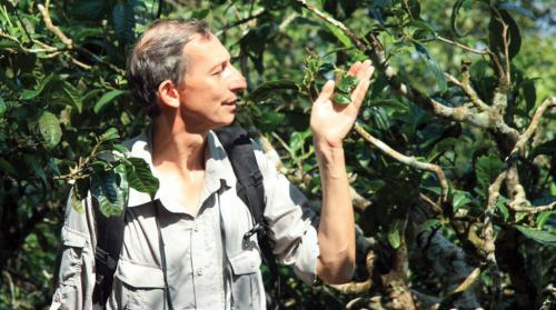 'There are more than 60,000 tree species in the world & my book had room for only 80!'