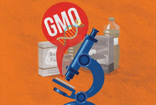 Genetically modified food: Whose health, whose business