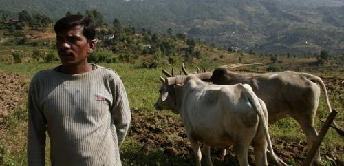 It may take at least 25 years to double farmers' income: study