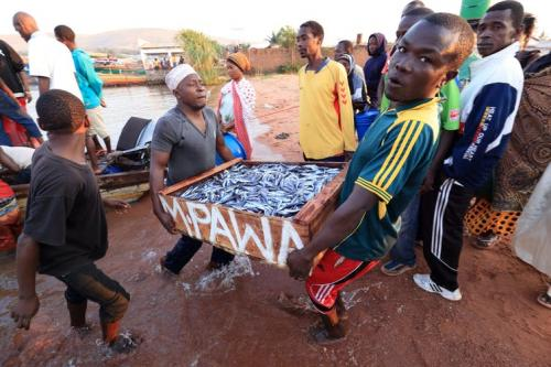 How corruption encourages illegal fishing on Lake Victoria