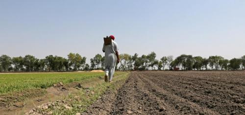 'Rationalising subsidies, improving infrastructure could revive agri-sector'
