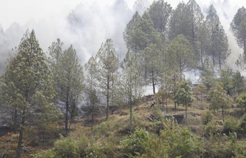 Forest fires in Uttarakhand: Absence of real-time air quality monitoring plagues Himalayas