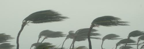 Cyclone Titli weakens after damaging crop, infrastructure