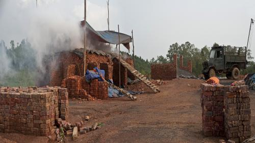 World's first bio-brick can help reduce CO2 emissions