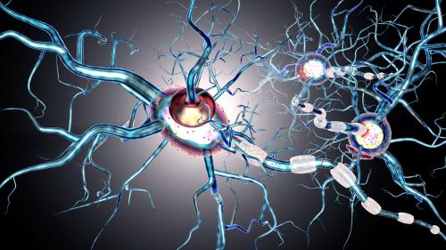 Indian scientists identify cells linked to obsessive-compulsive behaviour