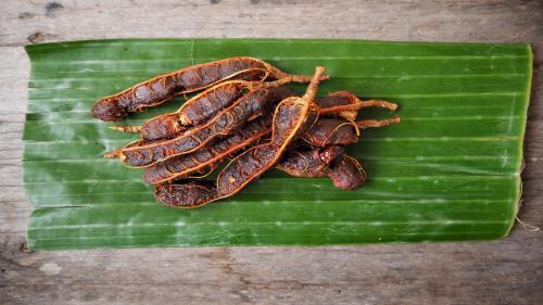 Method to prescribe tamarind for chikungunya yet to be found