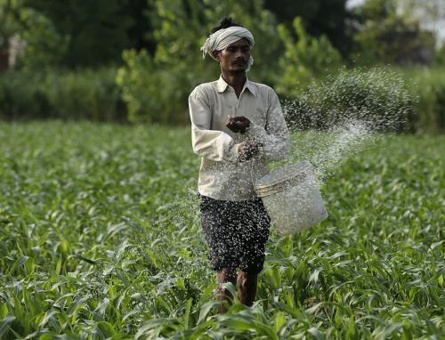 Around half the world's population depends on nitrogen fertilisers for food consumption. Credits: Vikas Choudhary
