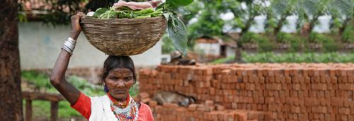 More than 50% of India's tribal population has moved out of traditional habitats