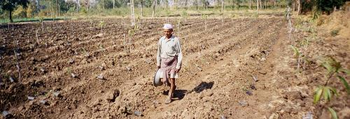 Inequality among farmers keeps 85 per cent out of discourse