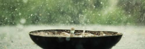 Poor northeast monsoon spells trouble for rabi season