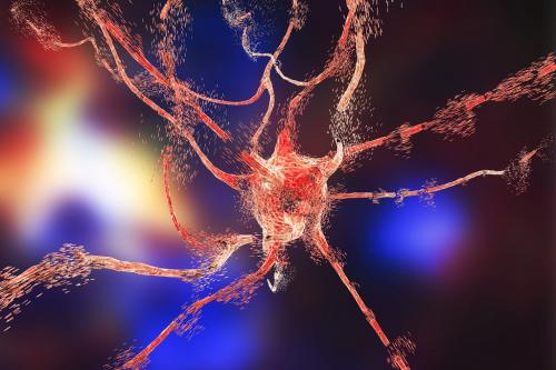 Scientists see link between oxidative stress and neurological disorders