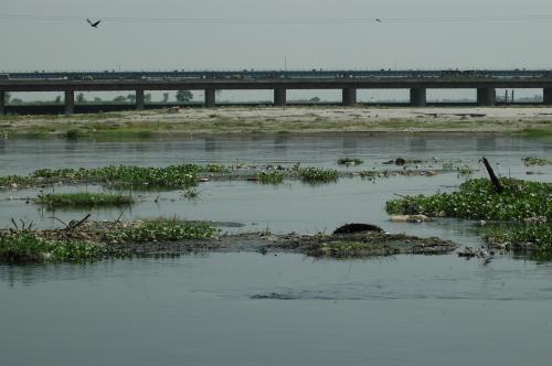यमुना में प्रदूषण के लिए हरियाणा जिम्मेदार, हाई कोर्ट जाएंगे: दिल्ली सरकार