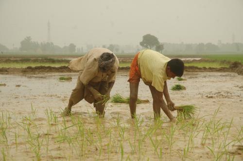 आधा समय गुजरा, किसानों की आय दोगुना करने का लक्ष्य अब भी दूर की कौड़ी