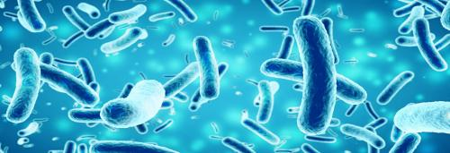 Are antibiotic resistant bacteria the new global epidemic?