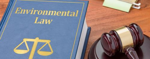 This UN report shows green laws remain in books