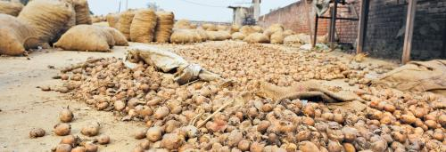 Punjab's cold storage owners struggle to stay in business