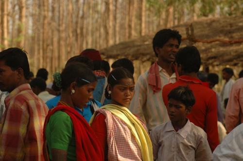 वनवासियों को बेदखली का डर, मंत्रालय ने कहा अस्वीकृतियों के आंकड़े अंतिम नहीं