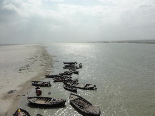 Bihar plans afforestation drive in villages along Ganga river