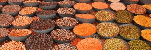 Rajasthan human rights body seeks answers over food adulteration