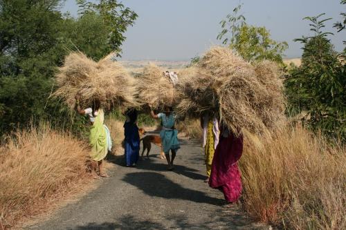 95 per cent women in India involved in unpaid labour