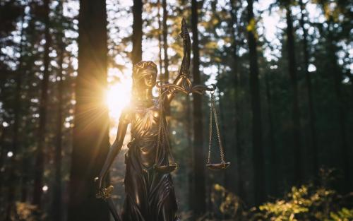 Premise of SC ruling on forest dwellers wrong: UN Special Rapporteur