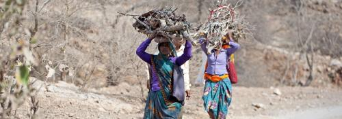 Duty on minor produce will violate forest rights: Experts