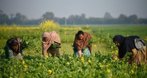 सामुदायिक भूमि पर अधिकार के लिए दलितों का आंदोलन